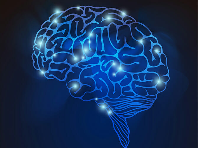 Cannabinoid and Endocannabinoid system's role in neurological disorders